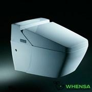 Унитаз-биде электронный ORANS OLS-0702