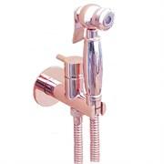 Гигиенический душ скрытого монтажа Webert EL870302980