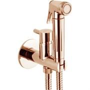 Гигиенический душ скрытого монтажа Webert EL870301980